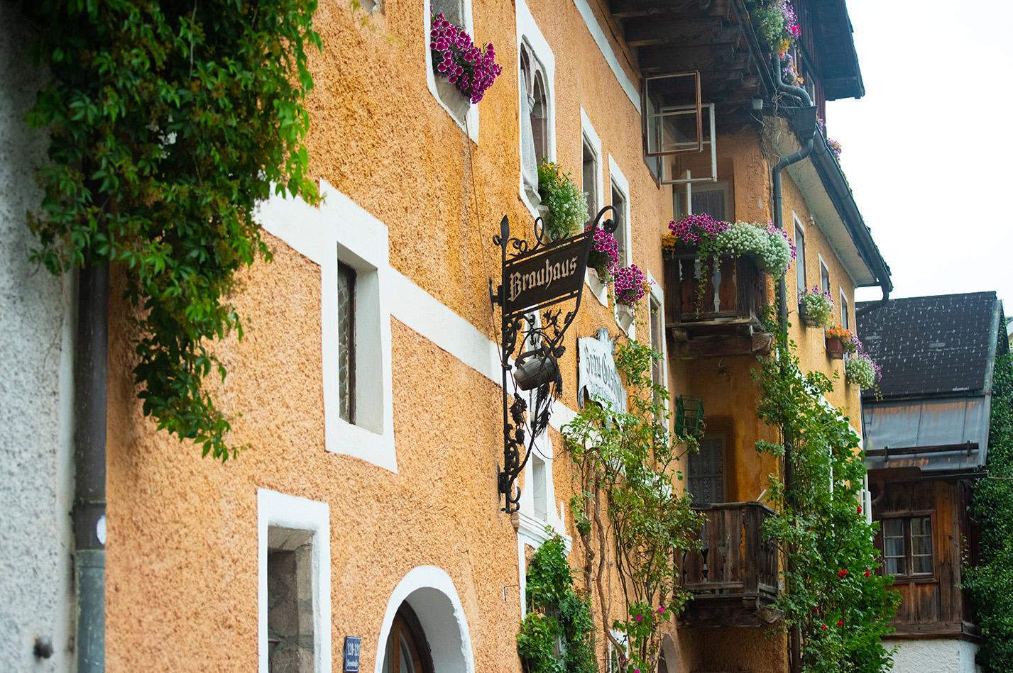 street-walls-flowers-beauty